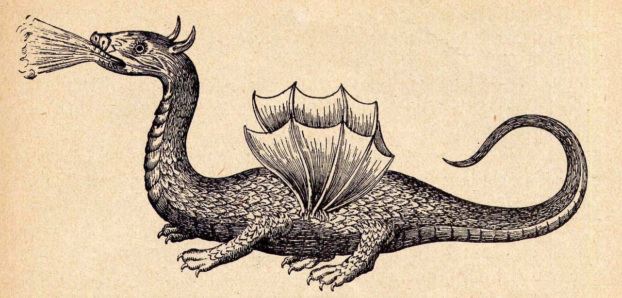 Athanasius Kircher dragon
